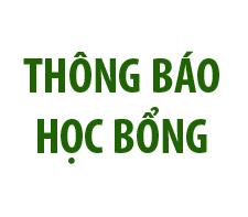 hocbong